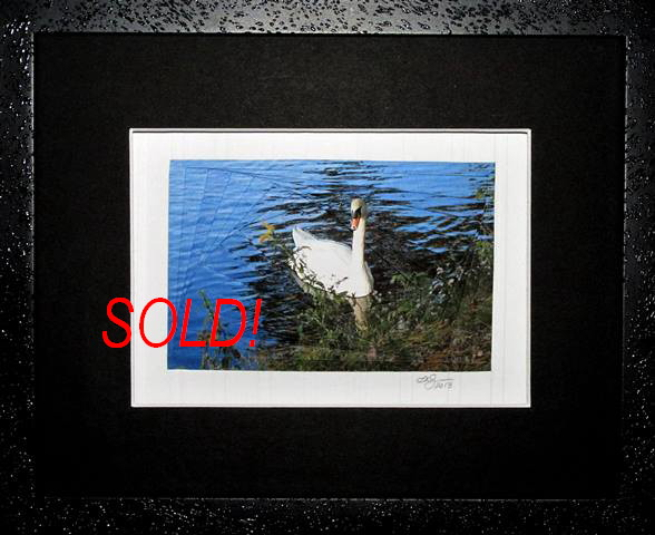reverse iris fold...swan on pond...framed
